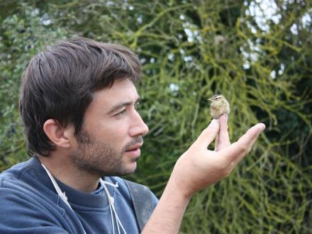 birding-mont-saint-michel-1